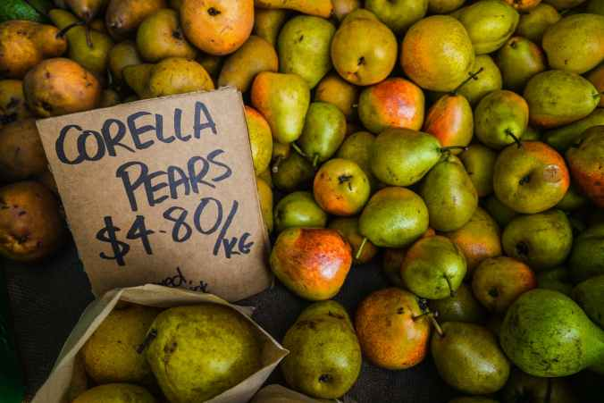 green and orange corella pear fruit lot